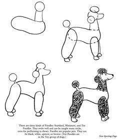 how to draw a cute husky