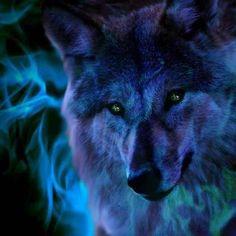 The spirit wolf. ~TWL~