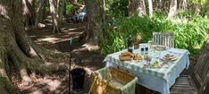 Picnic At Vergelegen - Vergelegen Estate - Somerset West, Winelands, South Africa