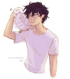 Harry and Hedwig. Made by nowhere-little-girl on tumblr