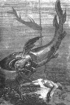 illustrations by Alphonse de Neuville and Édouard Riou