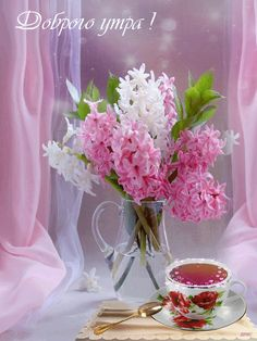 DIY Spring Flower arrangements with pretty spring flowers. Beautiful Flowers Images, Beautiful Gif, Flower Images, Good Morning Coffee Gif, Good Morning Images, Spring Flower Arrangements, Spring Flowers, Colorful Flowers, Exotic Flowers