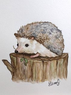 Hedgehog original watercolor