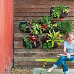 Hanging garden, planted in Woolly Pockets. Check out the great green color of the bench.
