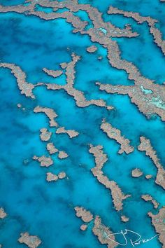 Great Barrier Reef, QLD    'Reef Patterns'