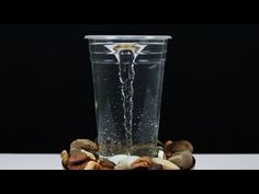 How to Make a Tornado in a Glass or Bottle - Home Decor Life Hack - YouTube