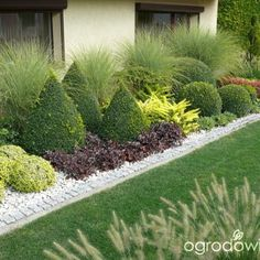 Front Yard Evergreen Landscape Garden 7 image is part of 50 Ideas to Make Evergreen Landscape Garden on Your Front Yard gallery, you can read and see another amazing image 50 Ideas to Make Evergreen Landscape Garden on Your Front Yard on website Garden Shrubs, Landscaping Plants, Front Yard Landscaping, Shade Garden, Landscaping Ideas, Garden Path, Evergreen Landscape, Evergreen Garden, Back Gardens