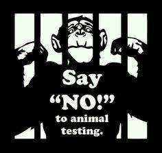 """Sag """"Nein"""" zu Tierversuchen!!  #gegenTierversuche  #wermachtwas   FB.wau.wau.rudeltier"""