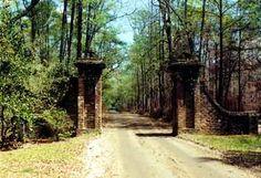 Entrance to Mansfield Plantation