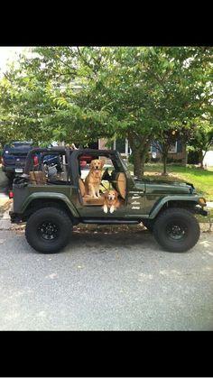 Dogs love jeeps!