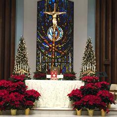 Church Altar Decorations, Church Christmas Decorations, Holiday Decor, Altar Flowers, Church Flowers, Advent Catholic, Church Fellowship, Falls Church, Church Design