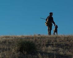 Hunting for Sharptail Grouse - Birdhunter