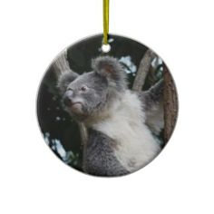 merry koala-mas christmas tree ornament Homemade Christmas Decorations, Christmas Tree Ornaments, Christmas Holidays, Christmas Crafts, Bumper Stickers, Holiday Gifts, Personalized Gifts, Merry, Gift Ideas