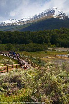 Hiking the Coastal Trail in Tierra del Fuego National Park, Ushuaia, Argentina.