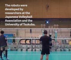 วอลเลย์บ็อต (Volleybot) หุ่นยนต์ที่จะช่วยทุ่นแรงการเล่นให้เบาลง