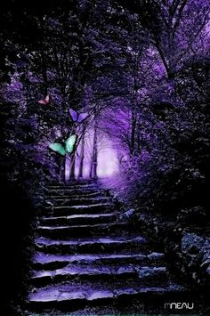 Ideas for fantasy landscape forests magic paths Purple Love, All Things Purple, Shades Of Purple, Deep Purple, Pink Purple, Purple Stuff, Beautiful Places, Beautiful Pictures, Purple Reign