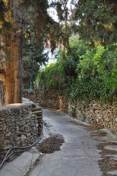 Λειβάδια Ανδρου: Ο δρόμος για το Μέσα χωριό Acropolis, Ancient Greece, Sidewalk, Walking, Magic, Island, Places, Side Walkway, Walkway