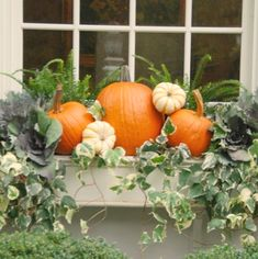 Dekoration Blumenkasten Superb Window Box Planters Ideas That Will Inspire You 13 Fall Window Boxes, Window Box Flowers, Window Ideas, Fall Containers, Succulent Containers, Container Flowers, Container Plants, Container Gardening, Fall Planters