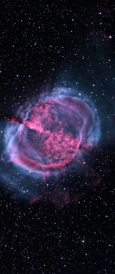 Nebula Constellation M27 Dumbbell Chanterelle.