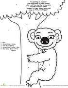 Koalas, Writing Activities, Graphic Organizers, Diagram