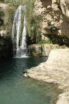 Ein Gedi (Israel) is a stunning oasis located just west of the Dead Sea. It is one of the most scenic and beautiful places for tourists and religious people who visit its astonishing, archaeological attractions. The scenery is extraordinarily beautiful and the site is immersed within the nearby wildlife.