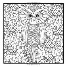 Mini Doodles: Owls: Volume 1:   Louise