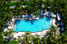 The 10 Most Gorgeous Swimming Pools in Miami Beach Photos | Architectural Digest
