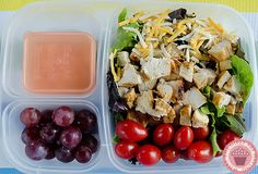 Healthy Lunch - Taco Salad .. lettuce, chicken, tomatoes, cheese