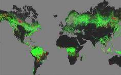 Δείτε στο Google Earth πώς άλλαξαν τα δάση μέσα σε 10 χρόνια (Video)