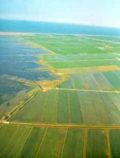 Vista de pájaro del delta del Ebro Catalonia