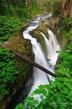 Sol Duc Falls, Olympic National Park, Washington.