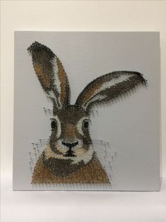 Hare String art portrait completed for a customer.