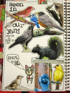 love this!! Use photographs for your nature journal!
