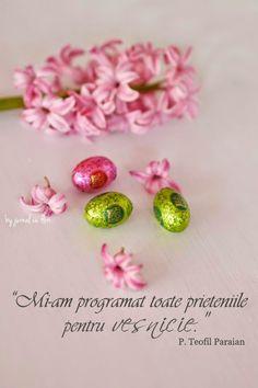 p teofil paraian qoute about love friendship eternity Flower Qoutes, Beautiful Words, Cool Words, Blog, Friendship, Stud Earrings, My Love, Flowers, Motivational