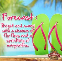 Forecast: Bright and sunny.....