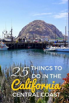 Visiting Morro Rock is one of the 25 things to do in the central coast of California, USA with kids. See what you can do along this stretch of scenic area.