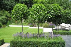 Slate Terrace Contemporary Garden designs by Lynne Marcus and built by the Garden Builders Formal Gardens, Small Gardens, Outdoor Gardens, Garden Seating, Terrace Garden, Contemporary Garden Design, Landscape Design, English Country Gardens, Garden Features