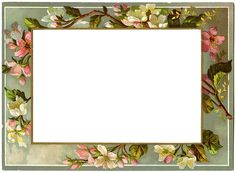 Wings of Whimsy ~ French Blossoms Frame (png)