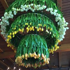 The Tulip Chandelier... One of our favorite masterpieces! #cwaymandesign #flowers #tulips #cutfloweratlanta @cathywayman @heather.reiner88 @bekslee @addiemsmith