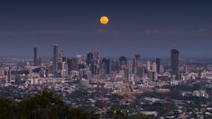 The full moon rises over Brisbane, Australia [OC] : CityPorn Full Moon Rising, Moon Rise, Brisbane Australia, Best Kept Secret, Seattle Skyline, High Quality Images, San Francisco Skyline, Skyscraper, Cities