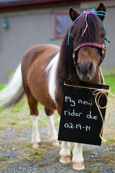 Cutest pony to announce new baby!!