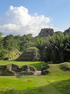 The El Castillo Temple towers high above the #Xunantunich #Maya site and offers panoramic views of the western Cayo District in #Belize. © SabreWing Limited 2015