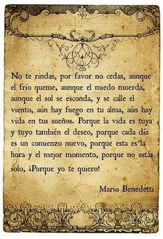 No te rindas. Words Quotes, Me Quotes, Sayings, Random Quotes, Pretty Words, Beautiful Words, Because I Love You, My Love, Frases Humor