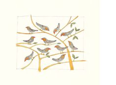Finches from 'Talk to the animals' by Alison Lester.