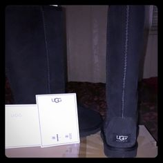 SIZE 6- tall black UGGS BRAND NEW, NEVER WORN. UGG Shoes Winter & Rain Boots
