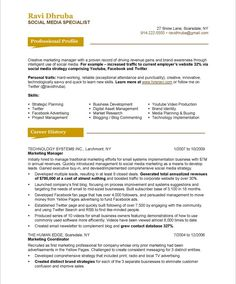 Blue Sky Resumes - Resume service