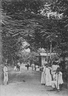 Carretera Naranjales,Mayaguez,Puerto Rico1910.