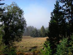 Palomar Mountain hiking