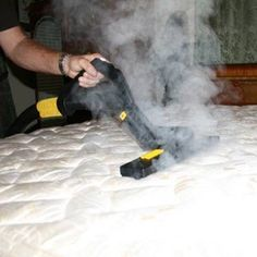 Six Home Remedies For Bed Bugs