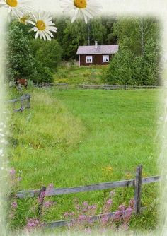 Finland Countryside by selphie10, via Flickr